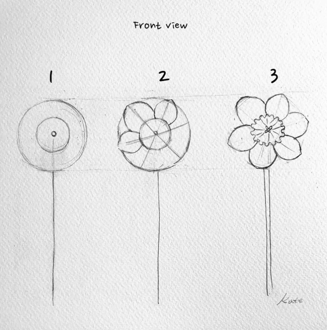 How to draw flowers for beginners? 40