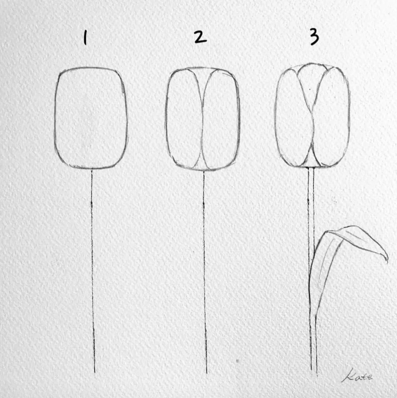 How to draw flowers for beginners? 49