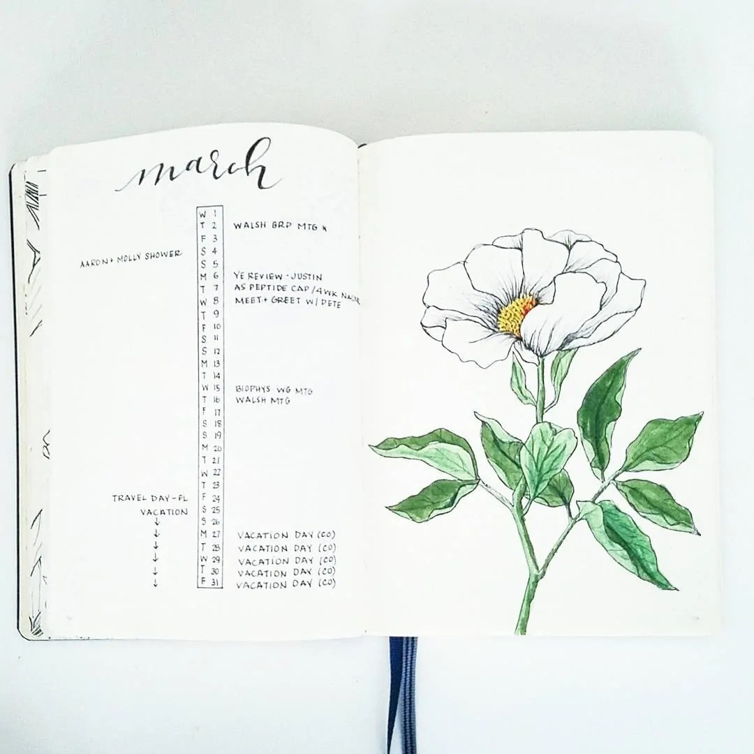 March Bullet Journal Monthly Ideas 9