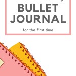How to set up Bullet Journal - Honest Review of Brainbook 27