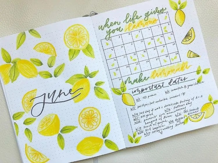 Bullet Journal June: Ideas and Inspiration 64