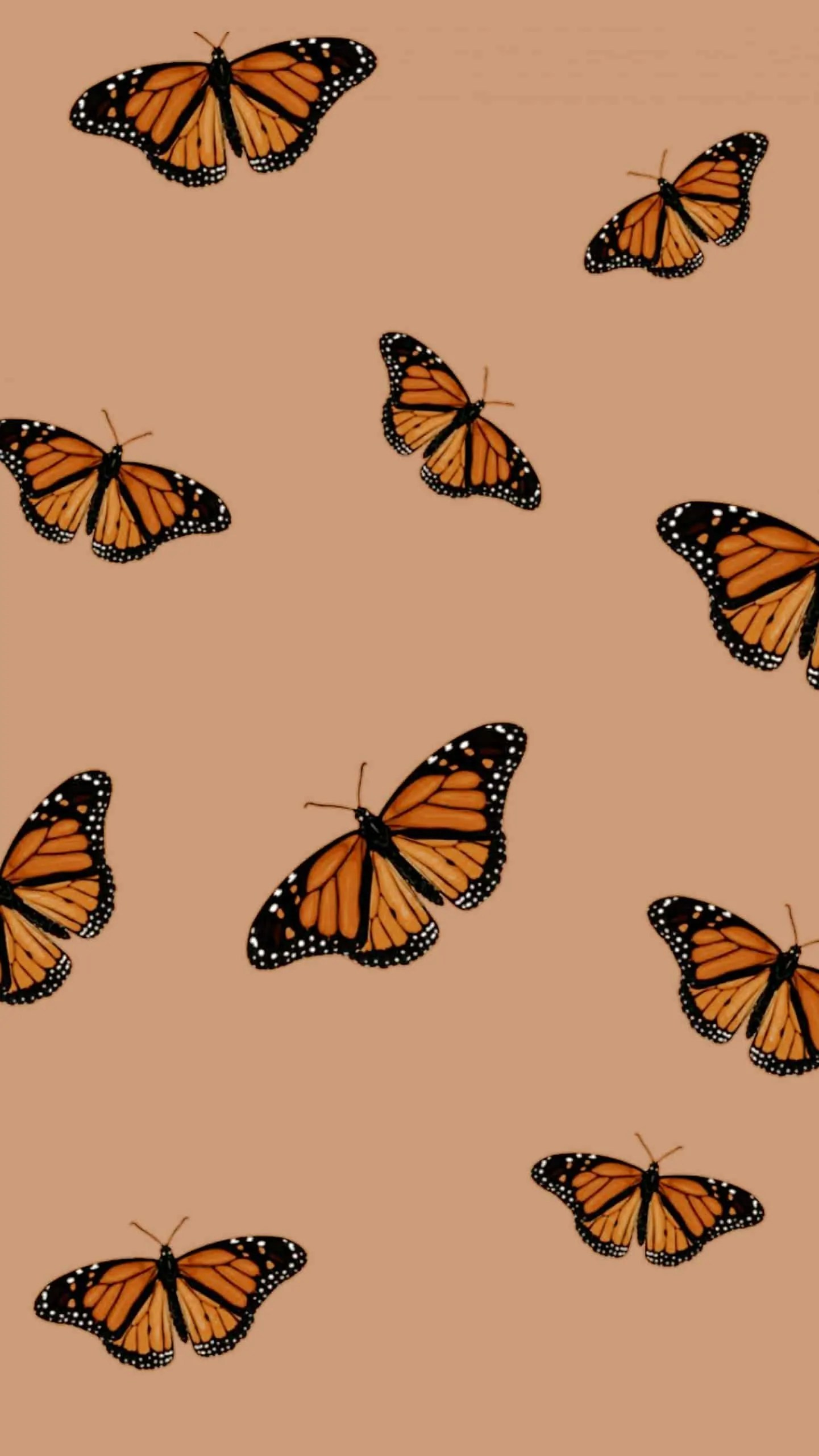 Aesthetic-Butterfly-Phone-Wallpaper-MadeWithPicsArt 5
