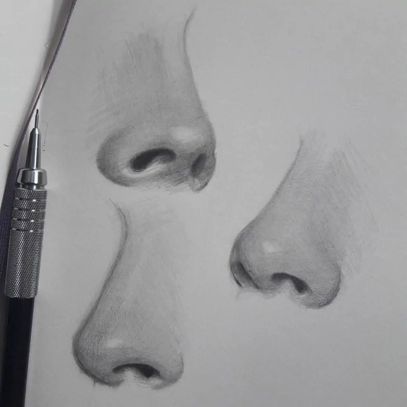 100+ Stunning Realistic Portrait Drawings 71