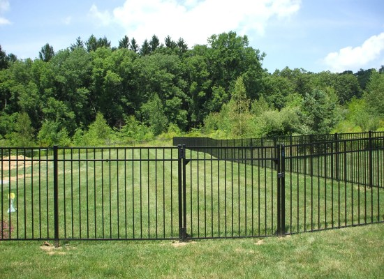 Contemporary black aluminum fence and single flat gate enclosing a grassy backyard