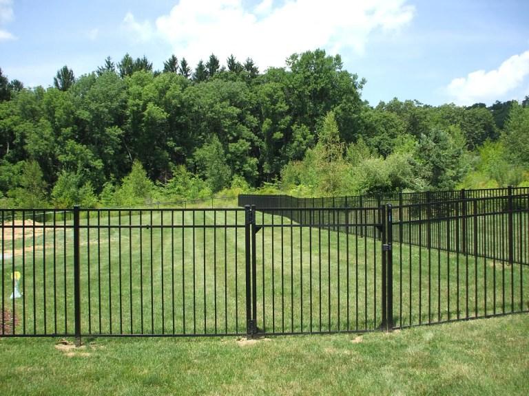 Contemporary black aluminum fence and single flat gate enclosing a grassy backyard