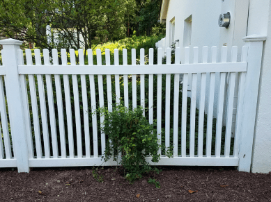 white wood picket fence with a green plant and mulch in front of it installed by Artistic Fence Company