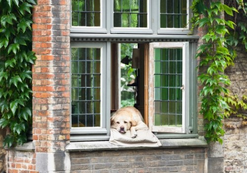 Older yellow lab in the window of an old stone house