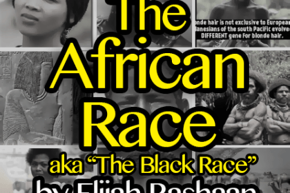 the african race