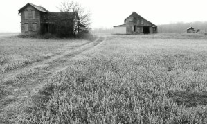 A Black and White Photo of an abandoned farm