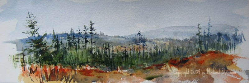 A painting done along the Silver River Access road soon after a clear cut