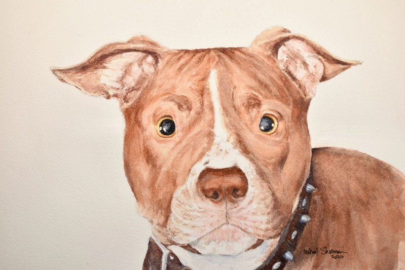 A painting of a Pit Bull