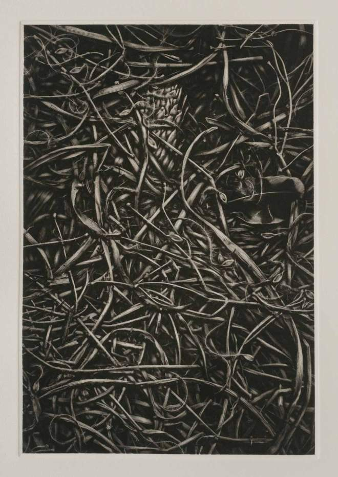 Title Straw I   Medium 	Copperplate Photogravure   Size 	20 in x 15 in
