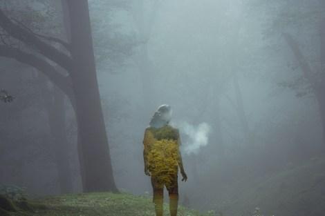 Untitled Photography 29 x 21 cm