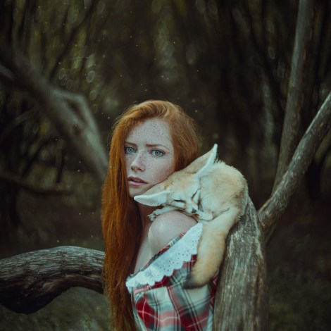 Title:Foxes Medium:Photography Size:5061x5061 px