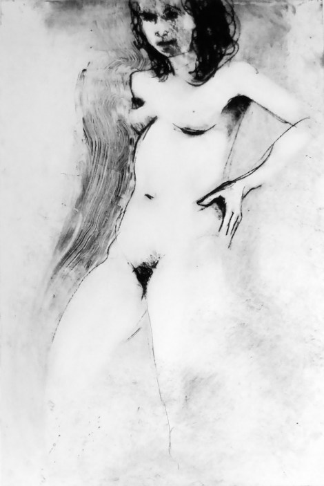 Title:Slovakian Girl Medium:drawing and solar intaglio Size:16.5 x 9 inches