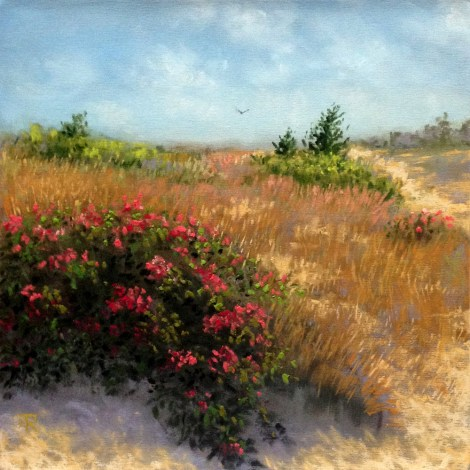 "Title:Across The Dunes Medium:	Pastel Size:	8""x8"""
