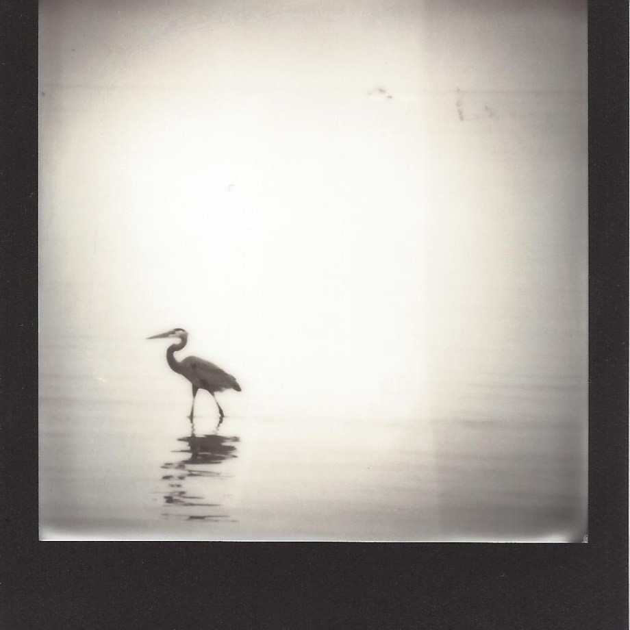 Title: Texas Coast 05 Medium: Instant Film Photography Size: 3.5 x 4 inches