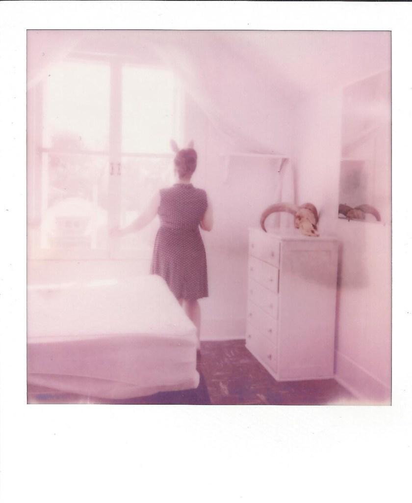 Title:Rabbit&Ram 03 Medium:Instant Film; Photography Size:3.5 x 4 inches
