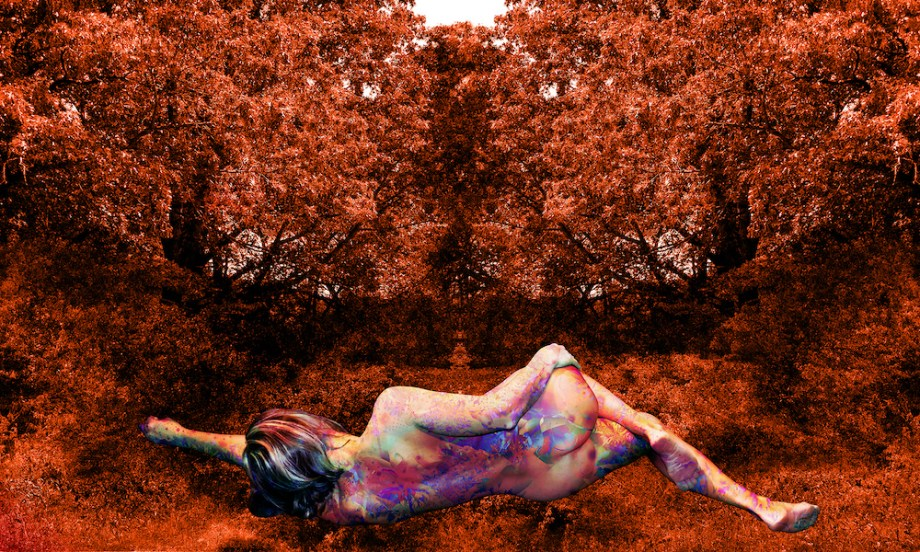 "Title:RECLINING VENUS ON THE GRASS Medium:	digital on high gloss aluminum Size:	30w"" x 18h"""