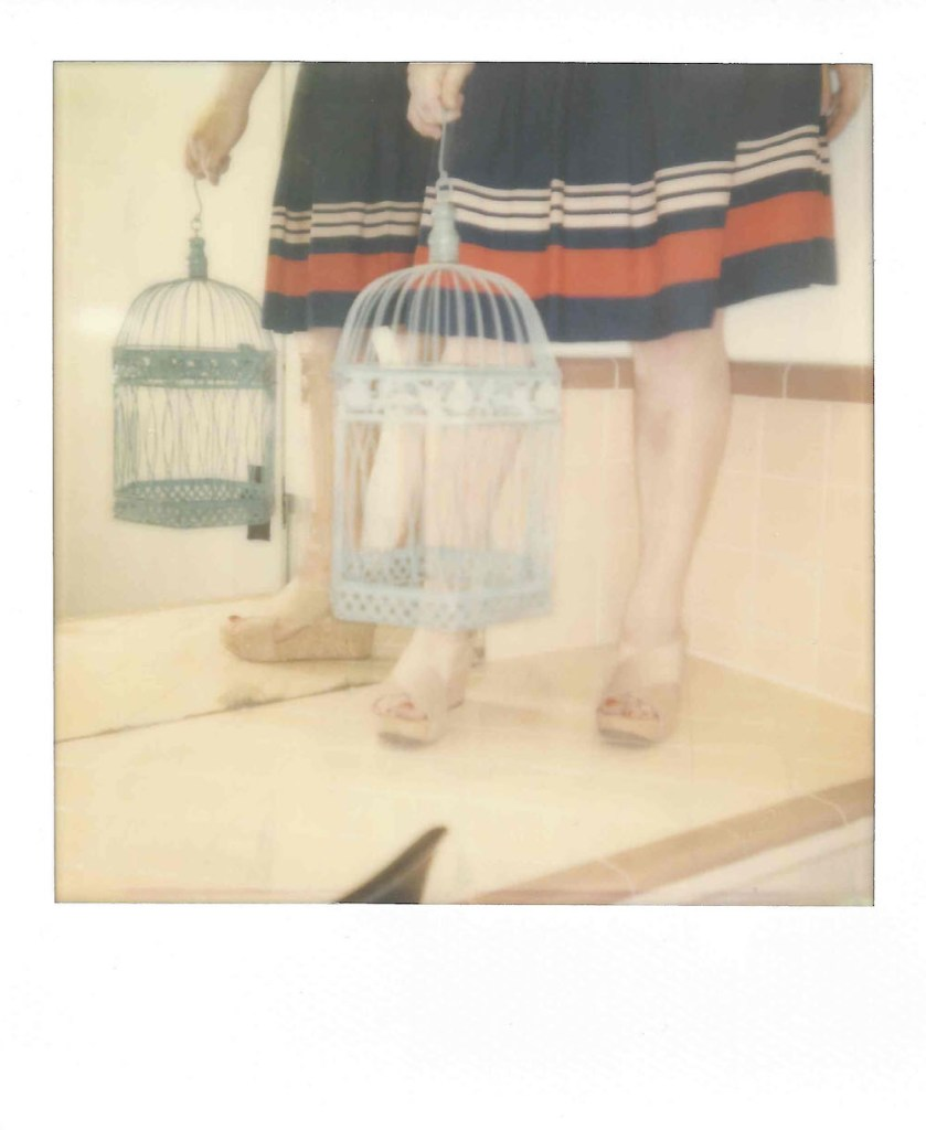 Title:Without a Bird 04 Medium:	Instant Film Size:	3.5 x 4 inches