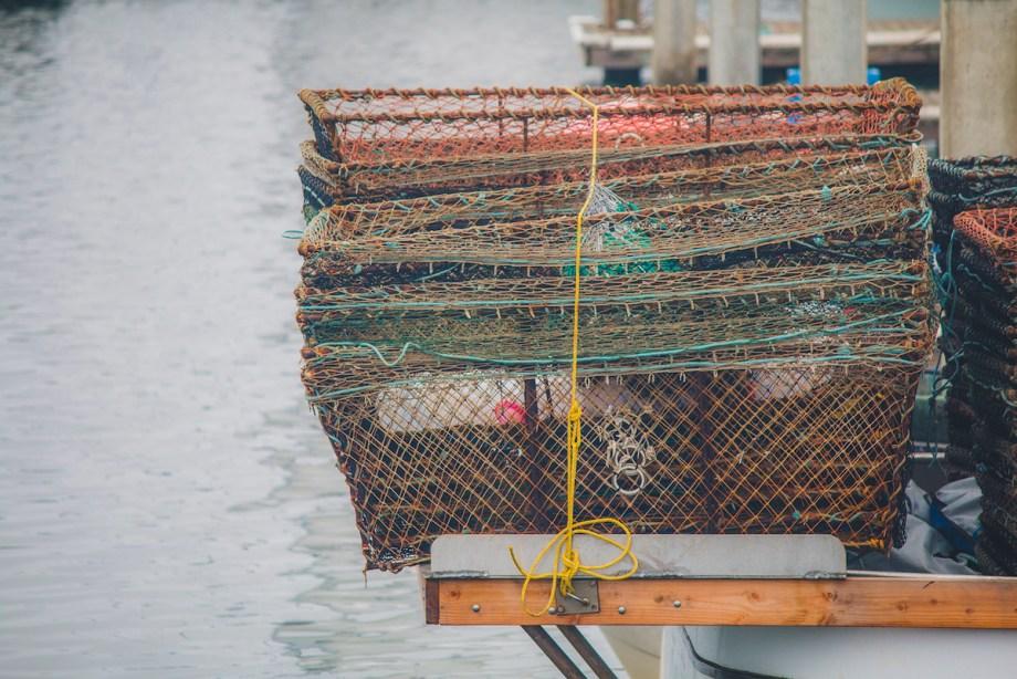Title:Fish Traps Medium:Photography Size:16x20