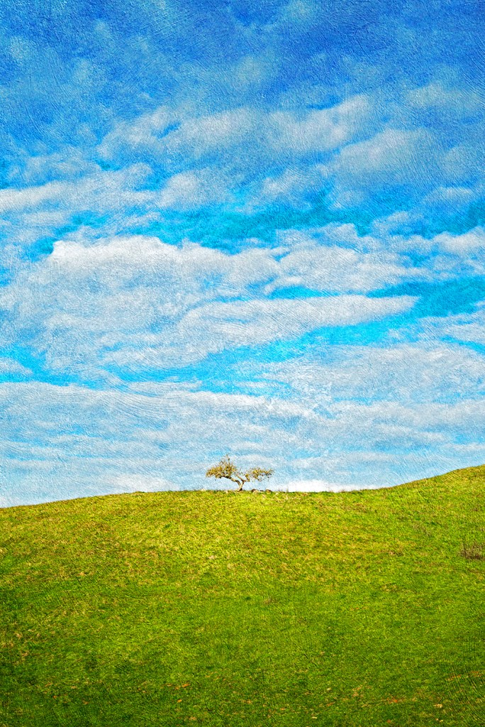 Title The Tree That Divides the Heavens and the Earth Medium Photograph/Digital Mixed Media