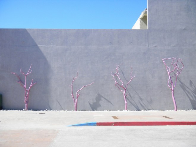 """Title Pink Trees Medium Photography Size 17x22"""""""
