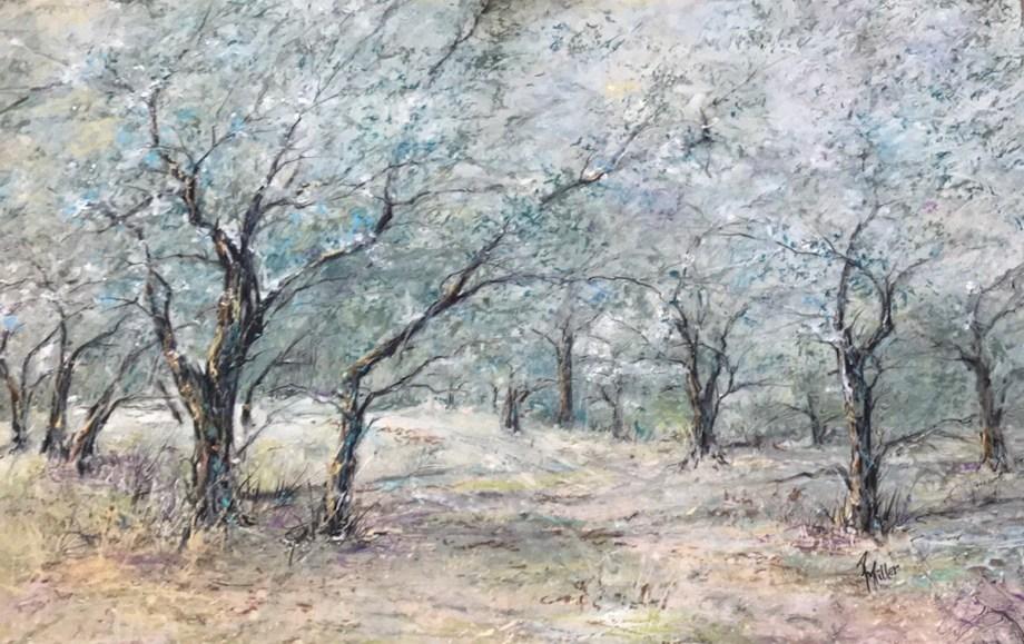"Title Vincent's Olive Trees(Arles,France) Medium Oil Pastel Size 14""x19"""