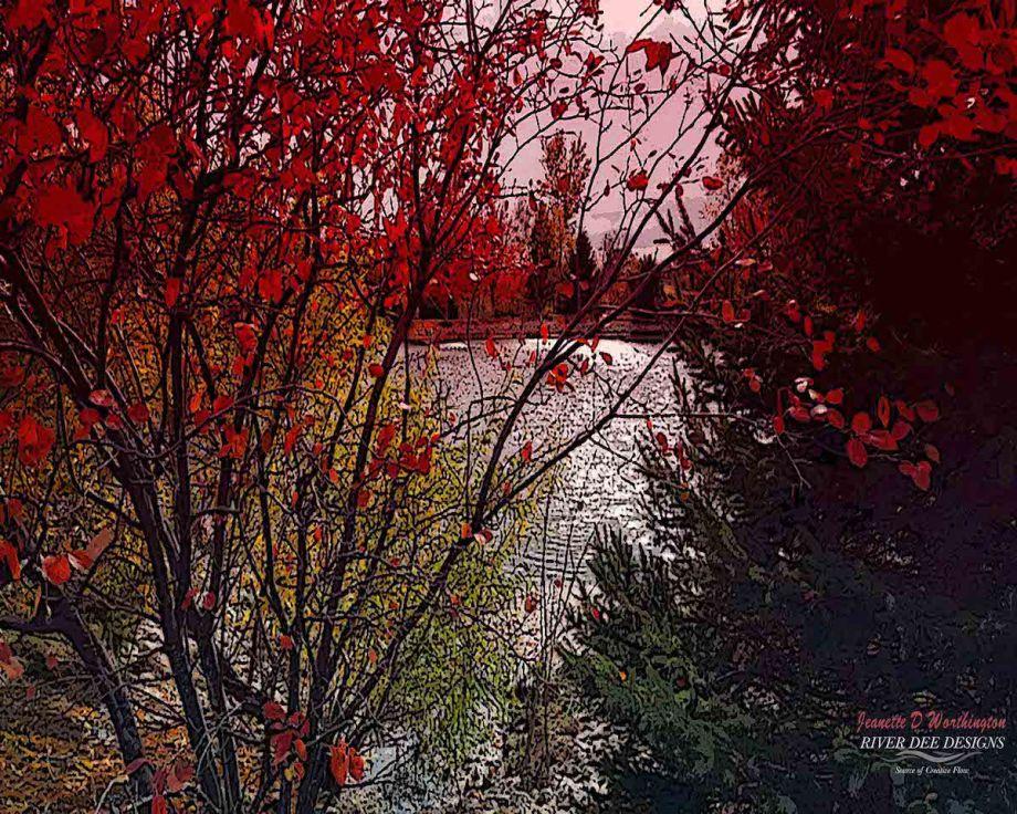 Pond Through The Trees Medium Digital Photography Size 8 x 10 or 16 x 20
