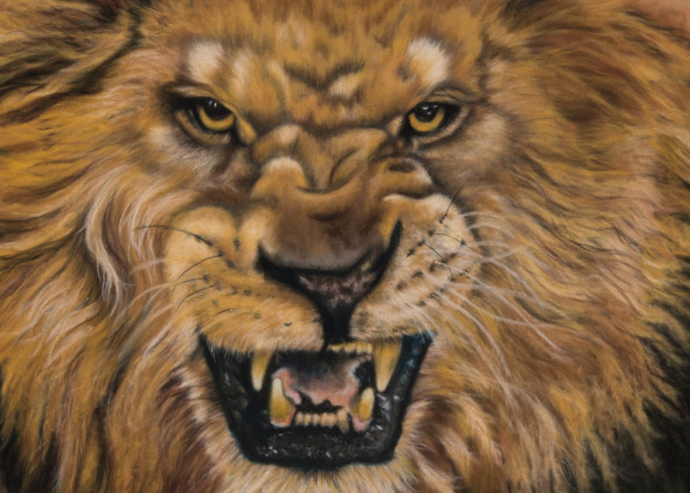 "The Lion of Judah Medium pastels on velour Size 9"" x 14"""