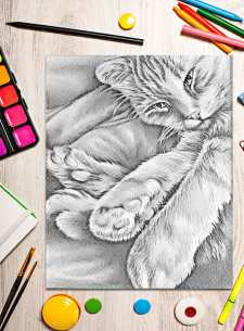 http://artistrybylisamarie.com/product/printable-coloring-page-cat-in-corner/