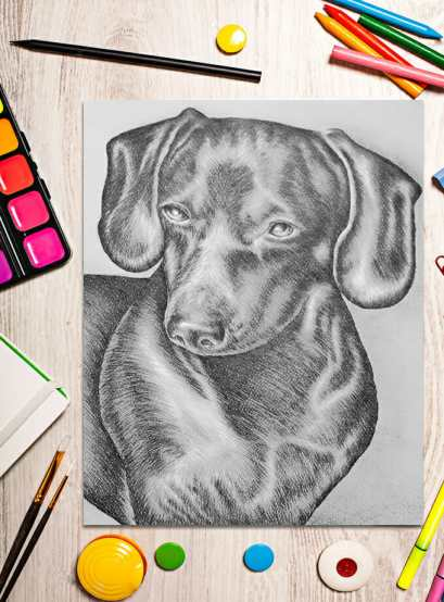 http://artistrybylisamarie.com/product/printable-coloring-page-dachshund/