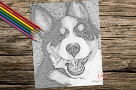 http://artistrybylisamarie.com/product/printable-coloring-page-dog-on-grass/