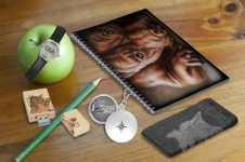 Schooled http://www.zazzle.com/nosesnposesfromalmthemed background of a wooden desk with a green apple and pencil