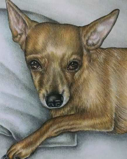 """""""Juan"""" 8""""x10"""" Colored Pencil on Paper, SOLD"""