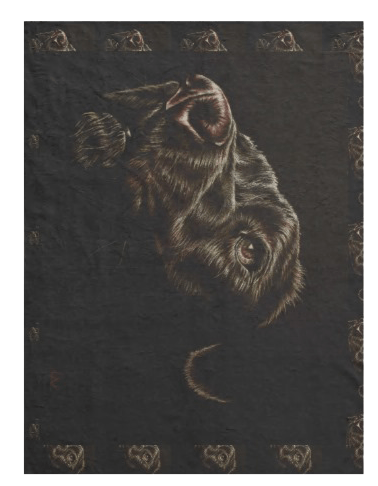 http://www.zazzle.com/drawing_of_black_dog_on_blanket-256765740077681113