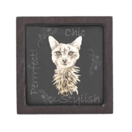 Chalk Drawing of White Cat on Trinket Box http://www.zazzle.com/drawing_of_white_cat_in_chalk_premium_gift_box-135154226812493689