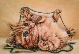 """""""Kitten with Turquoise Yarn"""" 5"""" x 7"""", $50, Matted"""
