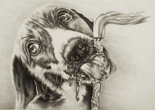https://www.etsy.com/listing/234368953/drinking-dog-drawing-8x10-dog-art-print?ref=shop_home_active_12