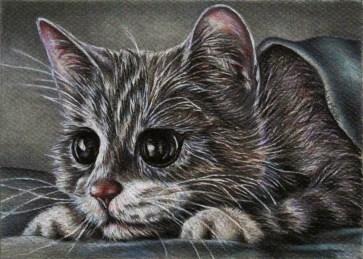 https://www.etsy.com/listing/234369341/cute-gray-kitten-drawing-8x10-cat-art?ref=shop_home_active_9
