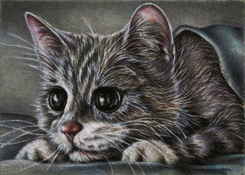 https://www.etsy.com/listing/234369341/cute-gray-kitten-drawing-8x10-cat-art?ref=shop_home_active_9