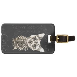 http://www.zazzle.com/drawing_of_white_cat_in_chalk_bag_tags-256475510164233519