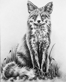 https://www.etsy.com/listing/250309083/fox-animal-coloring-book-pages-adult?ref=shop_home_active_6