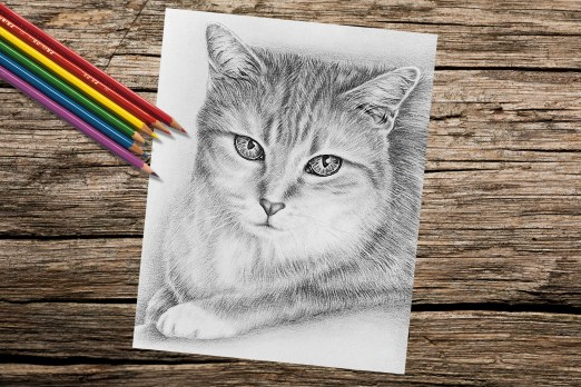 TabbyCatSitting_8x10_Coloring_OnWood