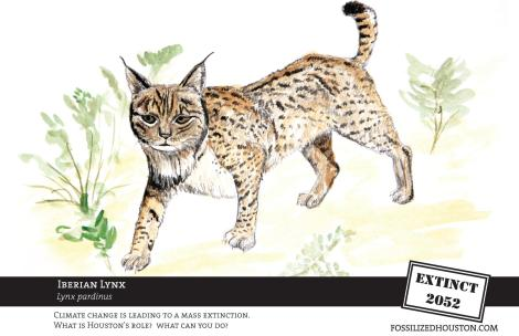 Lynx - Fossilized in Houston