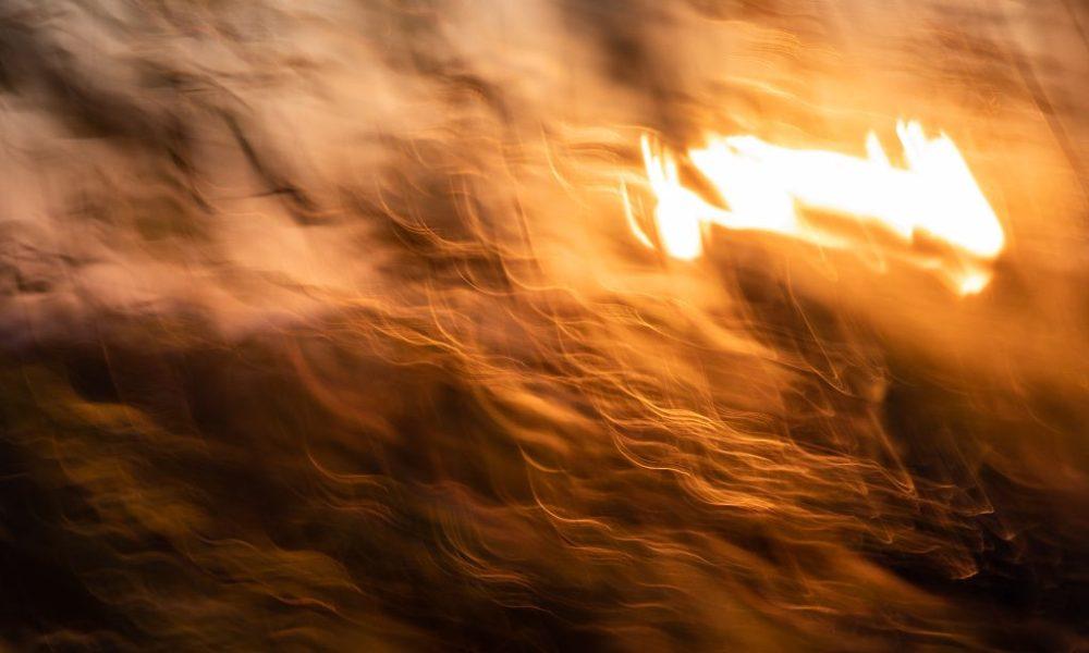 Joan Sullivan, Photographer, long-exposure, blur, blurr, painting with light, aspen, tree, leaves, nature, gold, orange, sun, sunset