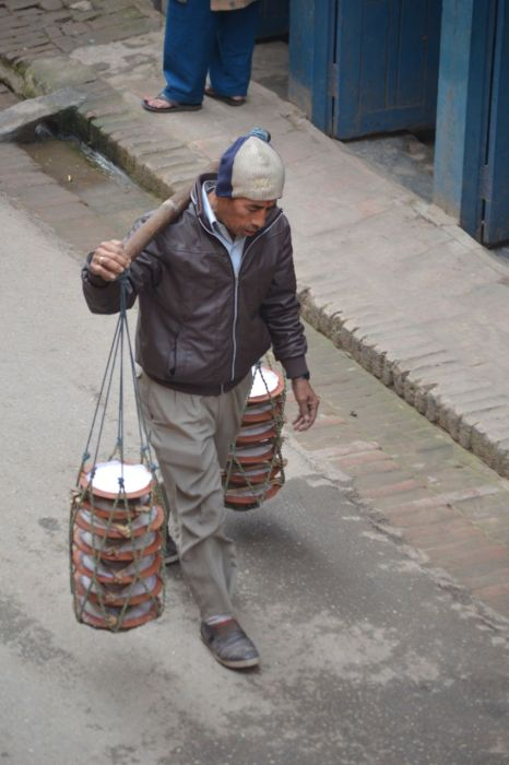 Carrying the King Curd to the shops