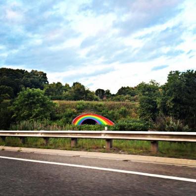 DVP Rainbow