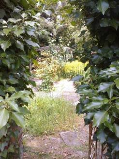 pickhams garden 7
