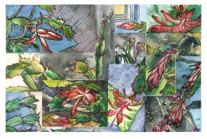 Christmas cactus collage watercolour painting
